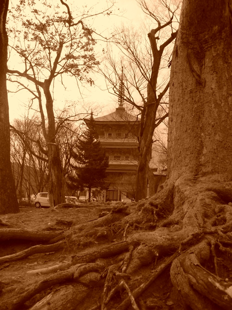 Temple Zenkoji / Nagoya
